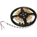 Transmedia LED strip 12V 60pcs 3528 m cool white 6000k