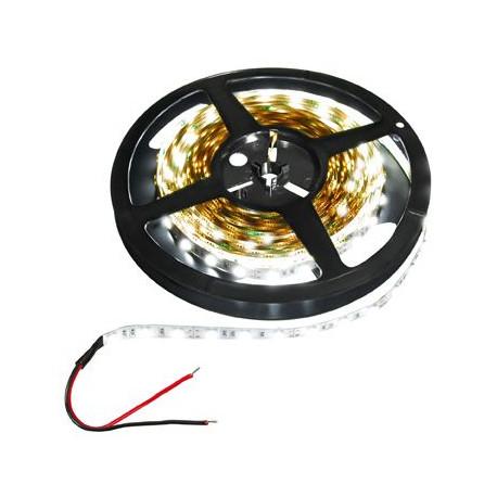 Transmedia LED strip 12V 60pcs 5050LED cold white 6000k