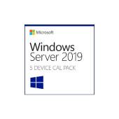 Windows Server CAL 2019 English 1pk DSP DEV 5 Clt