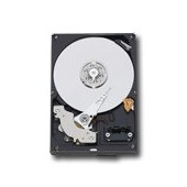"""WESTERN DIGITAL HDD Desktop Caviar Blue (3.5"""", 1TB, 64MB, SATA III-600)."""